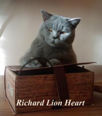 Richard Lion Heart