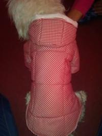 Кучешки дрехи