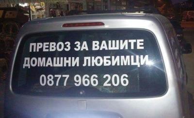 Animal taxi