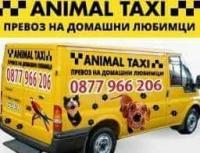 Animaltaxi